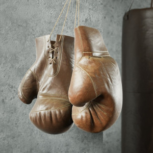 Бизнес план: открываем школу бокса