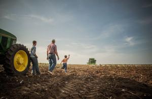 Бизнес план: как заработать на зерне
